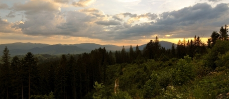 панорама карпат на закате