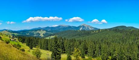 Панорама Горган