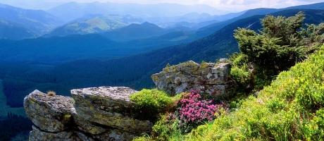 гора говерла в карпатах