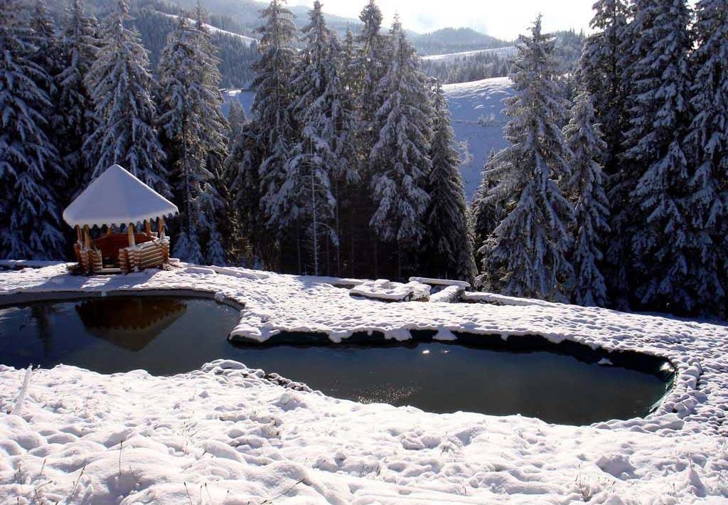 зима в микуличине