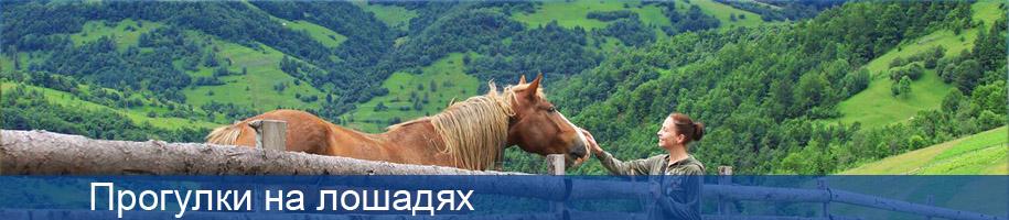 прогулки на лошадях в полянице